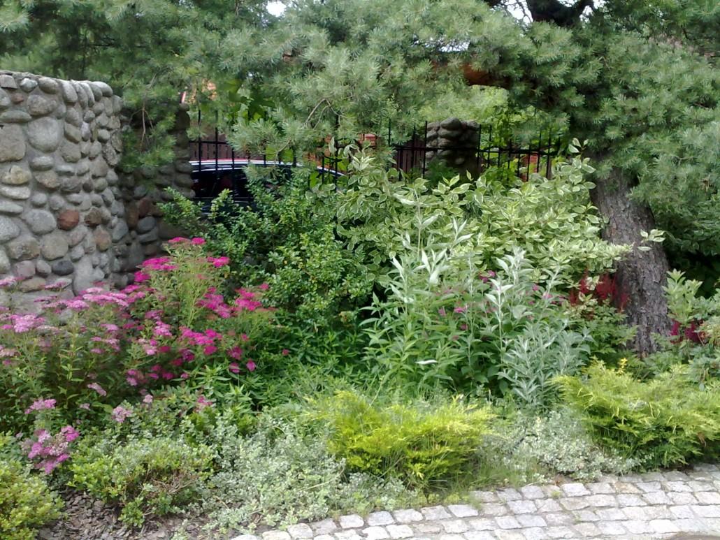 tajemnicza droga ogrod 1