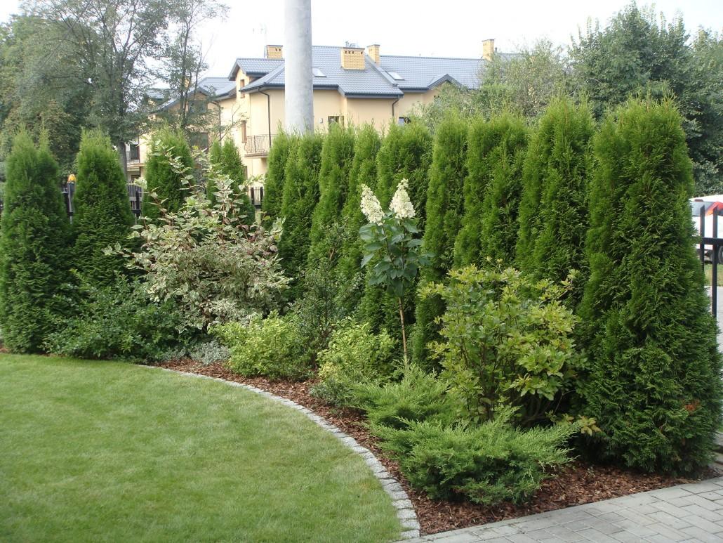 zamknieta przestrzen ogrody