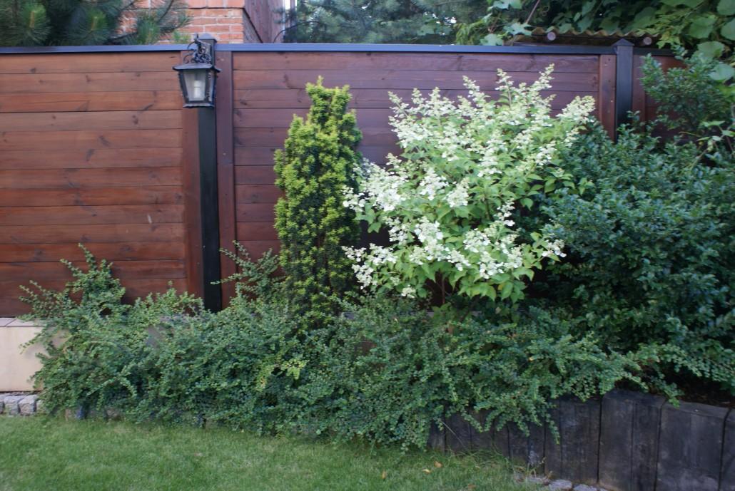 zaczarowany ogrod 1