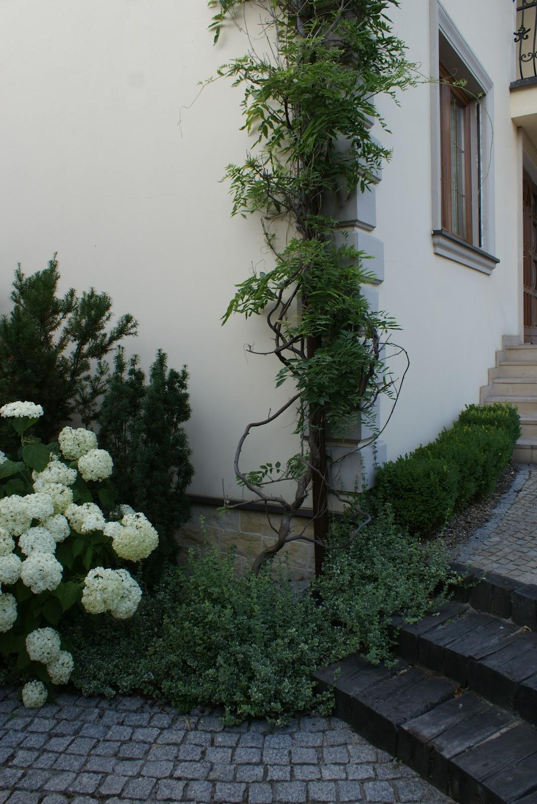 zaczarowany ogród 2