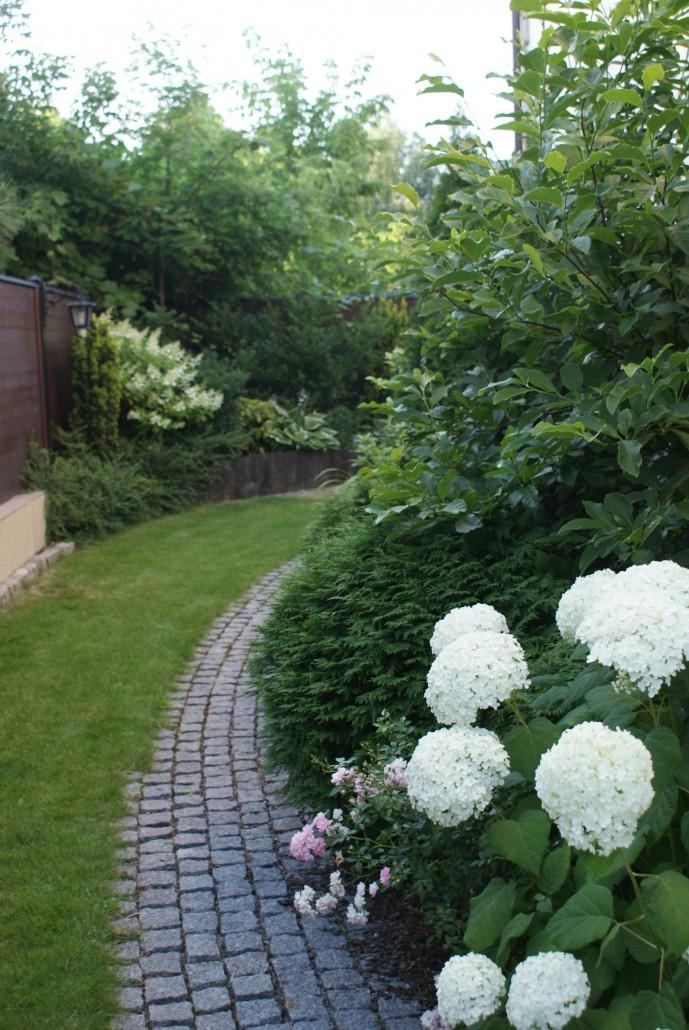 zaczarowany ogrod 2