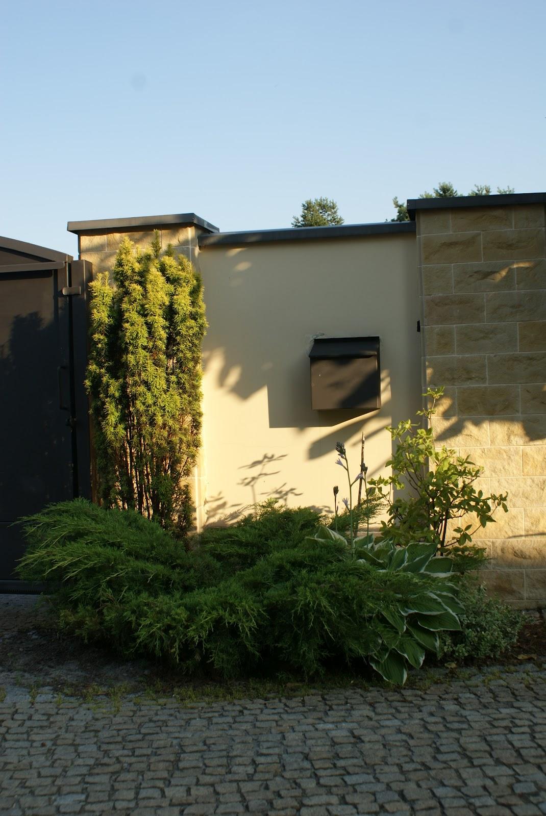 zaczarowany ogród 3