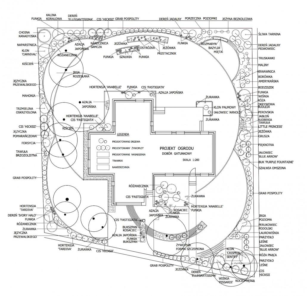 koncepcja_ogrodu_2